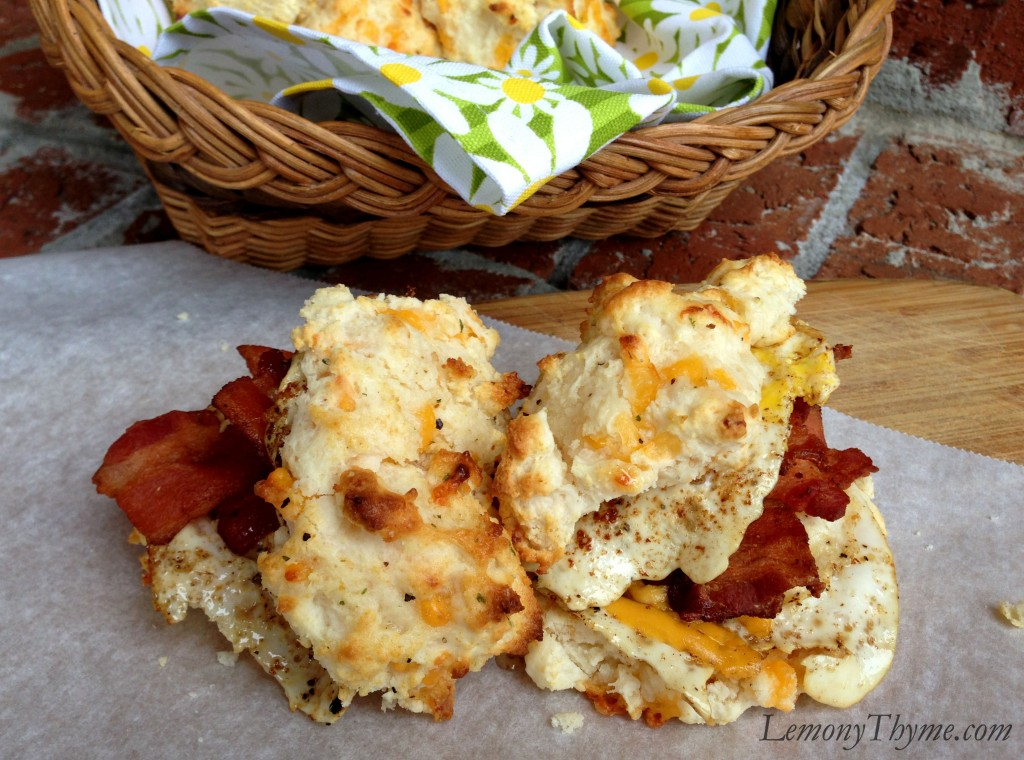 Cheddar Cheese Biscuits With Cilantro Recipes — Dishmaps