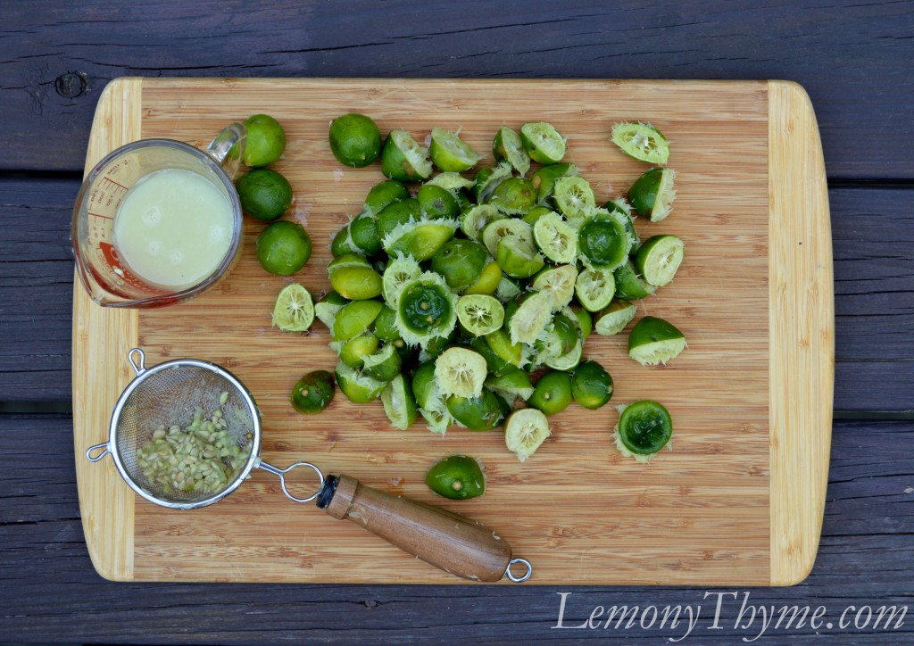 Key Lime Bars with Macadamia Crust {Share the Love} Lemony Thyme