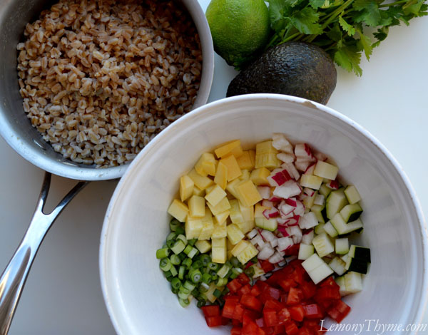 Avocado, Cilantro & Lime Farro Salad {with Fresh Veggies}