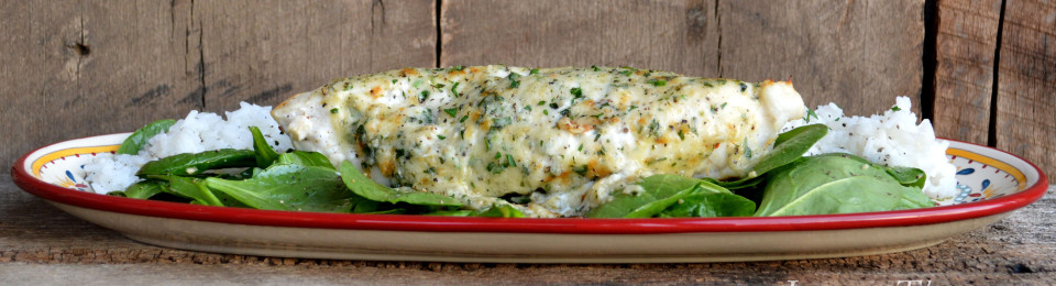 ... broiled grouper parmesan broiled grouper parmesan recipes yummly