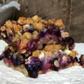 Blueberry Pecan Crumble Bars10