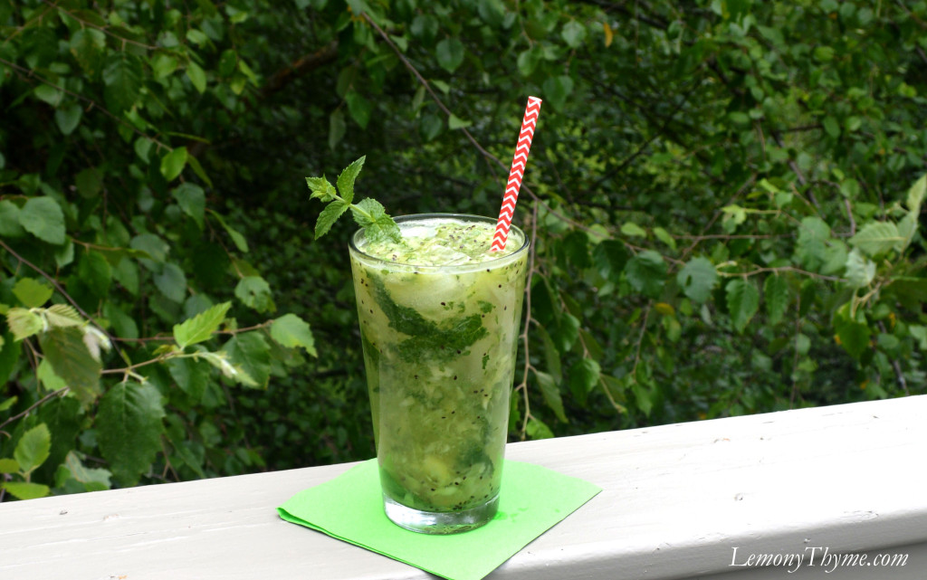 Virgin Muddled Kiwi Mojito Recipes — Dishmaps